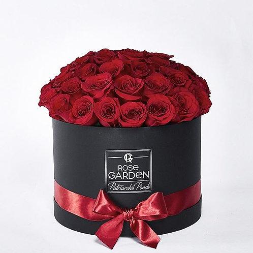 59 роза MY ROSE GARDEN
