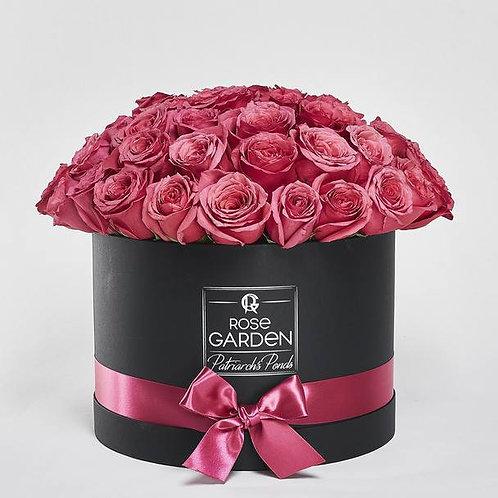 69 роз  My rose garden