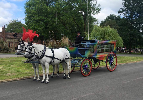 FB_IMG_1529071860329.jRainbow Horse Hearse Blackpool