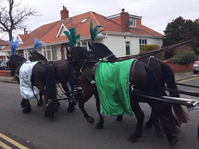 Black Horses with Green and Blue Drapes