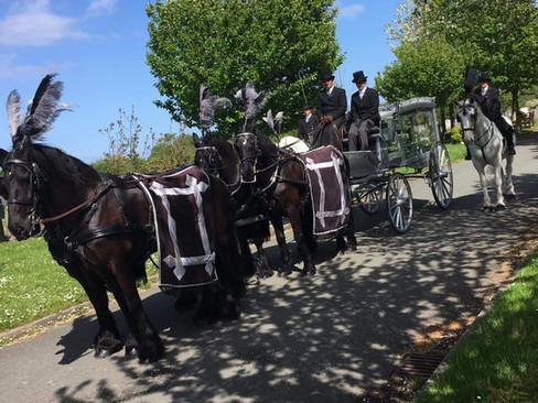 Black Horse Team