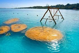 650x-estromatolitos-bacalar.jpg