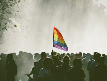 Manifestando diversidad
