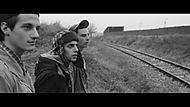 colore-camaleonte-film-2