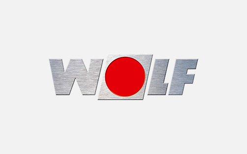 wolf.2e16d0ba.fill-640x400