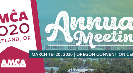 Call for abstracts - AMCA 2020