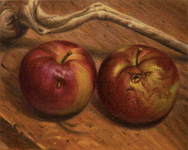 STUDY STILL LIFE OF DECAYING APPLES WITH DRIFT WOOD (2008)