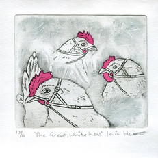 The Great White Hens