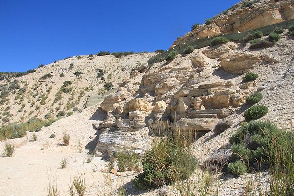 Fossil Butte 02.jpeg