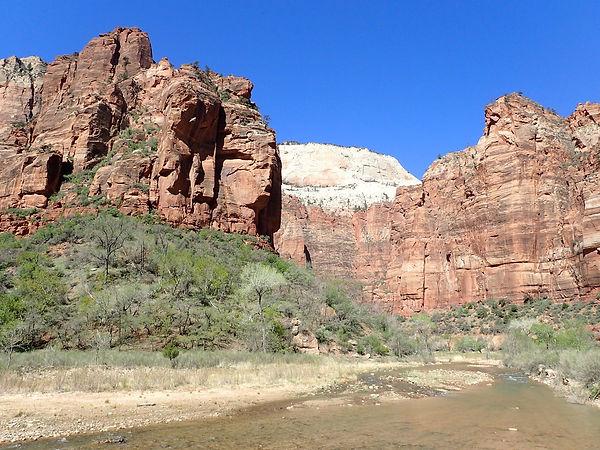 Zion Navajo Sandstone 02.jpeg