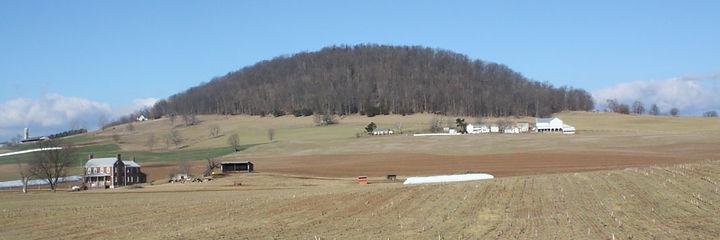 Mole Hill Virginia.jpg