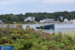 Week 3: Coastal Photography