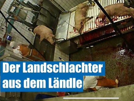 Steuerzahler EUR Verschwendung für Tierquäler im Gärtringen Skandal