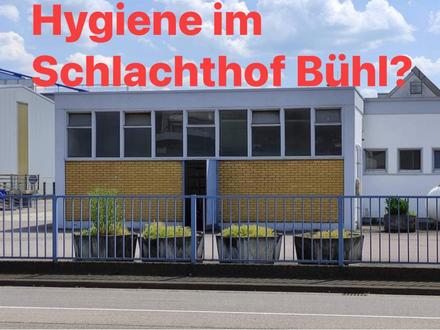 Eine einfache Frage. Keine Antwort! Schlachthof Bühl: Landkreis Rastatt mauert.