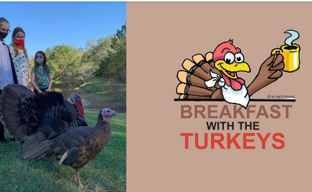 """MS Museum of Natural Science Hosts """"Breakfast with the Turkeys"""""""