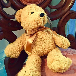 Teddy Bear $14.jpeg