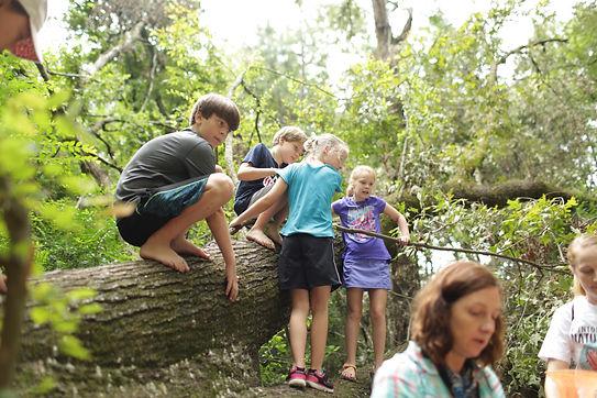 Clinton Nature Center Programs