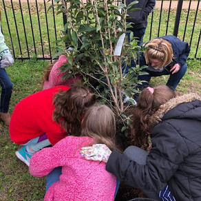 Arbor Day occasion for gardening lesson