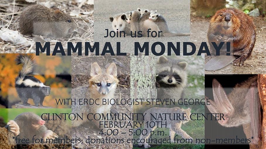Mammal Monday