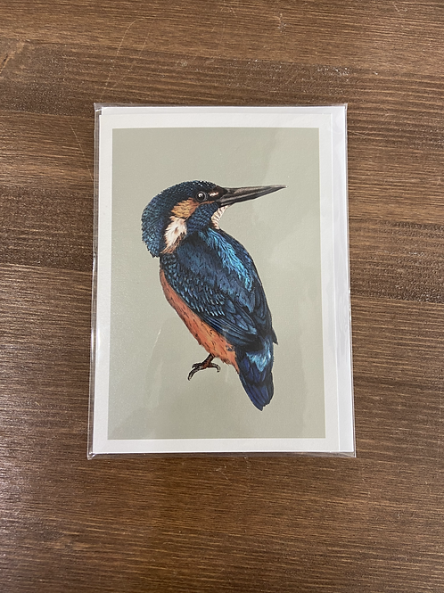 NH01 - KINGFISHER