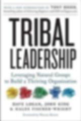 tribal leadership book cover.jpeg