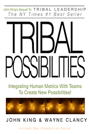 Tribal Possibilities Book Cover V3.png