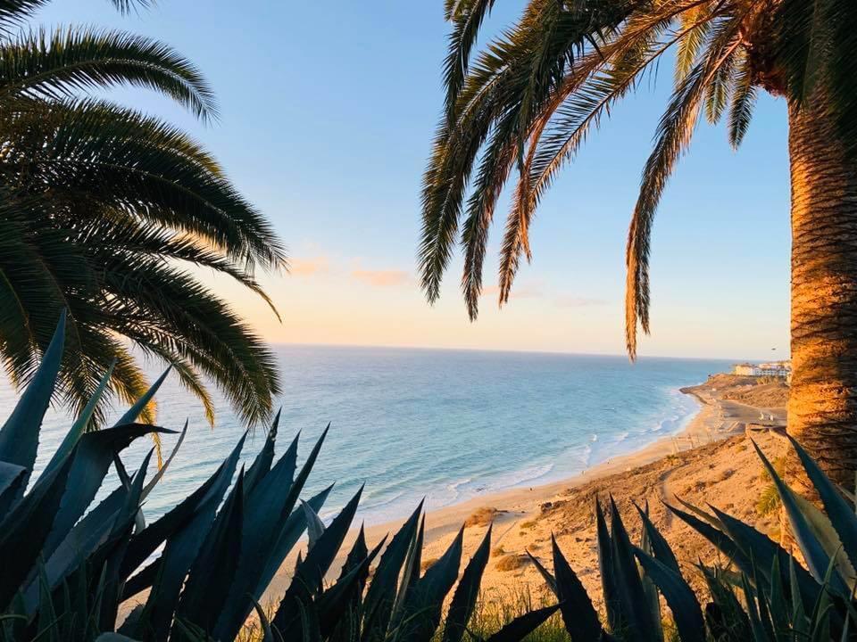 Fuerteventura, Strandfoto von Melanie Schweder, Reiseagentur Vospohl, Dorsten