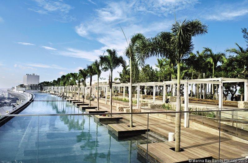 Marina Bay Sands Pool.jpg