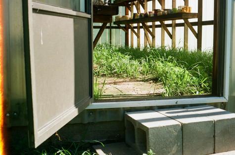 The Door to the Greenhouse