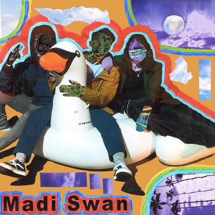 Album Cover Art for Madi Swan Band