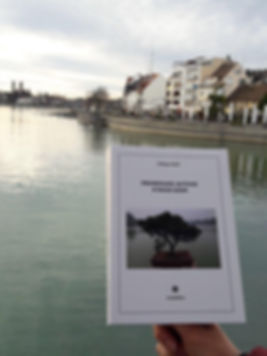 Promenade autour d'Hoan Kiem de Philippe Mary à Friedrischafen