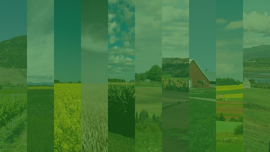 Canada%20-%20provincial%20farm%20scenes_