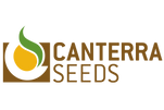 logo_top.jpg.png