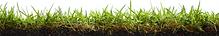Verified Lawn