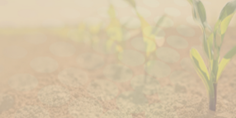 Soil Health Background.png