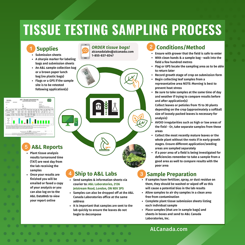 A&L Tissue Testing Sample Process March