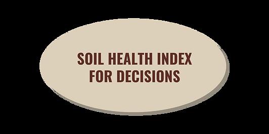 VitTellus Soil Health Index for decision