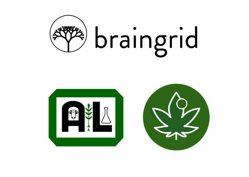 A&L Canada Laboratories + ALCannTrace™ Alliance with Braingrid