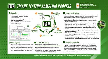 A&L Tissue Testing Sample Process Twitte