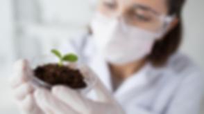 Soil lab.png