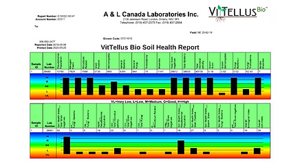 VitTellus Bio Soil Health Report June 20
