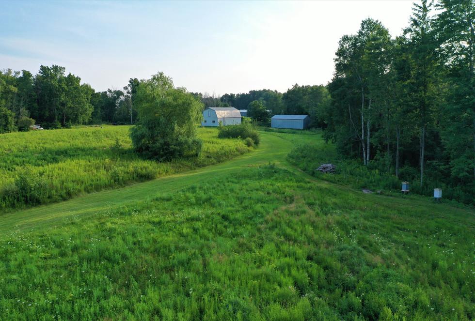 The Barns and  Bee Yard