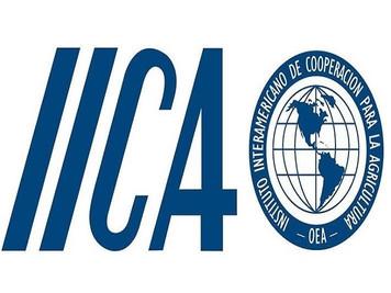 IICA lança convocatória pública do fundo para apoiar projetos na Paraíba