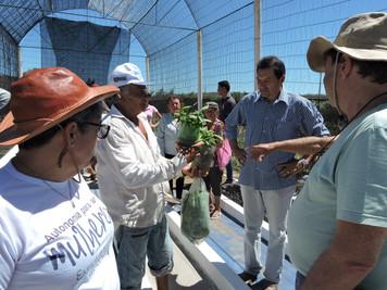 Fundo Internacional de Desenvolvimento Agrícola visita as ações do Procase em comunidades rurais do