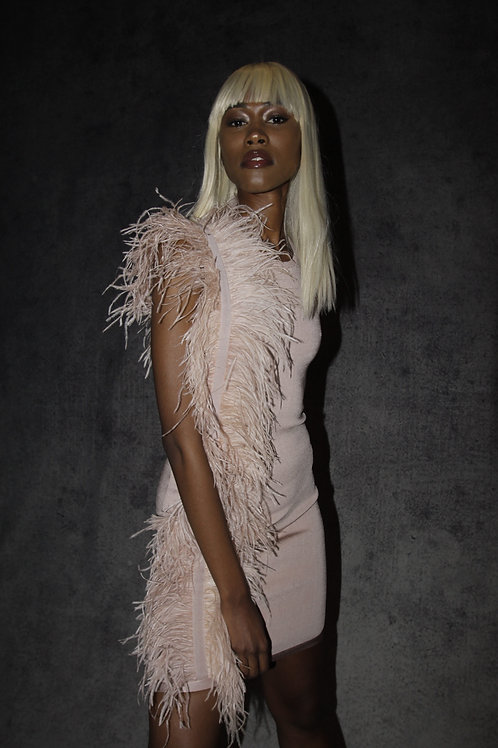 Nude Ostrich Feather Dress