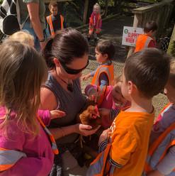 country-kids-teacher-chicken.jpg