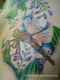 dragonfly tattoo 2008.jpg