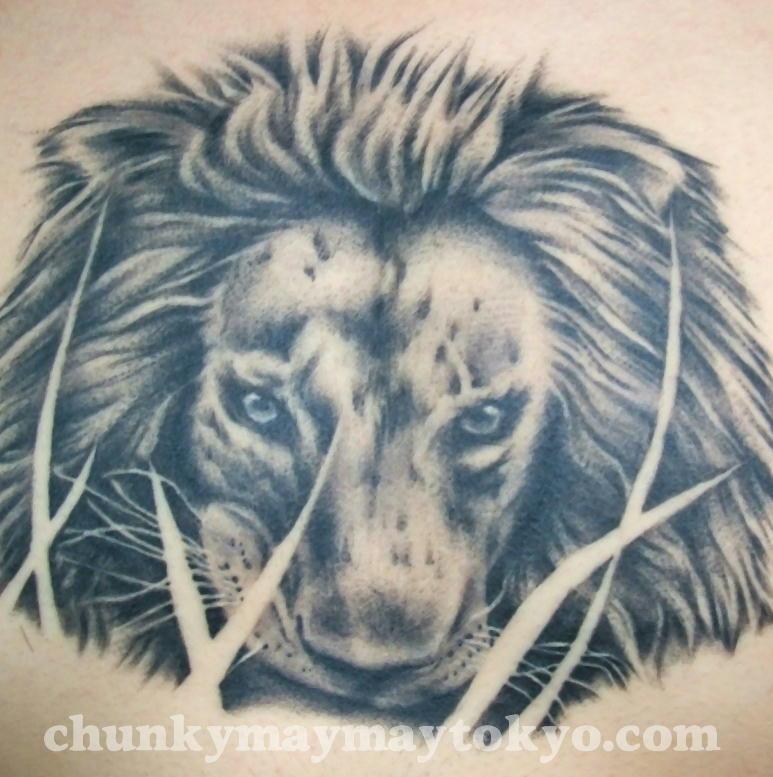 lion 2006.jpg