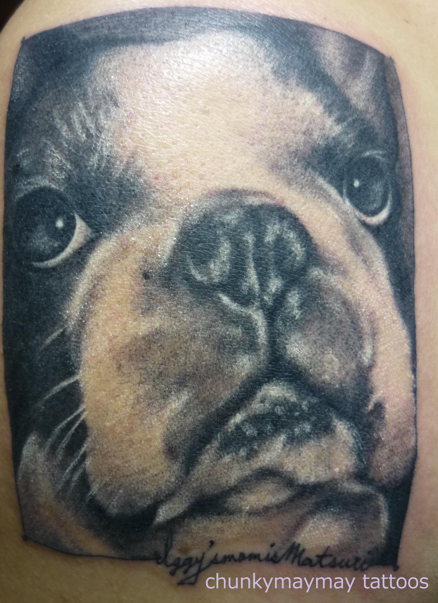frenchbull tattoo 2013.JPG