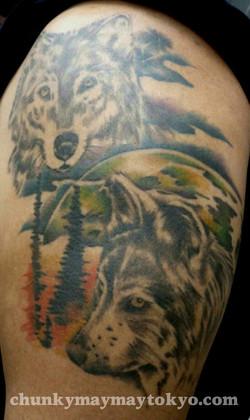 wolves 2008.jpg